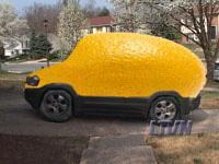 Lemon Buyback Law